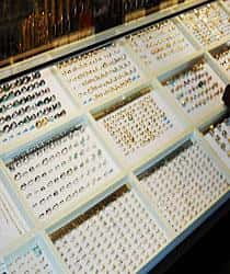 Large display of gold rings